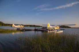 Tiny Planes Air Ivanhoe Limited Does Fly In Fishing Right Northeastern