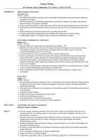 sle resume for business analysts duties of executor of trust strategy resume sles velvet jobs