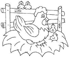 coloring page of a chicken free printable chicken coloring pages animal colouring natural page