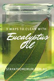 3 ways to clean with eucalyptus oil stay at home mum