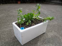 How To Make Self Watering Planters by Spurtopia Our Sustainable Living Story Blog