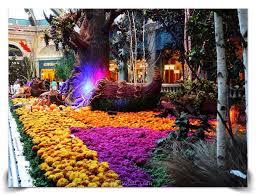 Botanical Gardens In Las Vegas The Fall Bellagio Conservatory And Botanical Gardens Las Vegas