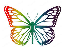 rainbow butterfly wall art print butterfly home decor wall art 8 x