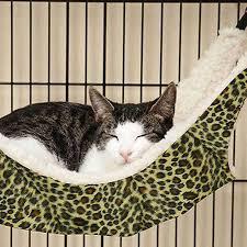 cool eno hammock stand best eno hammock stand u2013 myhappyhub chair