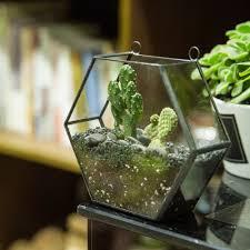 popular vertical pots buy cheap vertical pots lots from china wall geometric hexagon glass terrarium box succulent plant planter hanging flower pot vertical garden bonsai terrarium