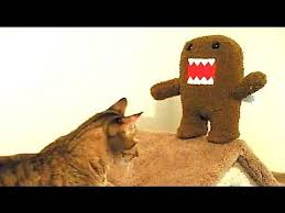 Domo Meme - domo video gallery sorted by comments know your meme