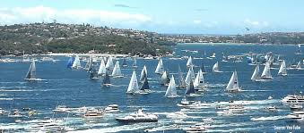 sydney harbour cruises sydney harbour boxing day cruises 50 per person