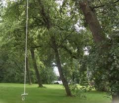 rope swings tree swings tree house accessories tree top