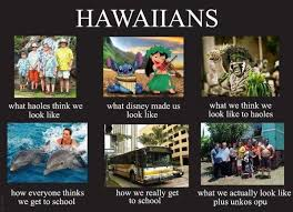 Hawaii Memes - hawaii travel meme