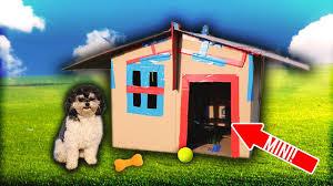 mini box fort challenge dog house box fort youtube