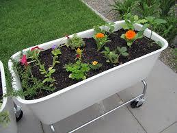 Urban Gardens Denver - denver modern the blog urban gardening gardenista urban