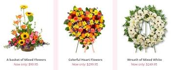 flower delivery colorado springs our staff at flower delivery colorado springs takes great pride in