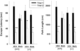evaluation of cb1 receptor knockout mice in the morris water maze