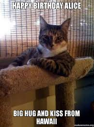 Cat Hug Meme - happy birthday alice big hug and kiss from hawaii make a meme