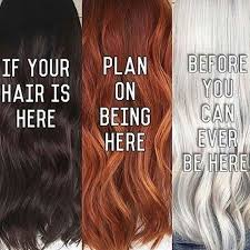 Hair Meme - 71 best hair memes images on pinterest new year s hair