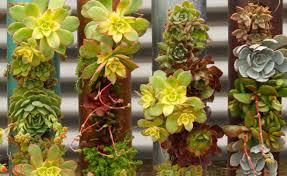 cool indoor outdoor modular cylinder planters urban gardens