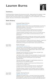 American Resume Example by Project Director Resume Samples Visualcv Resume Samples Database