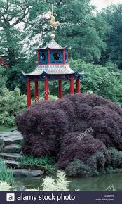 stone steps and red leaved acer below chinese pagoda style gazebo