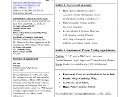 What To Put In The Summary Of A Resume 100 Writing A Resume Breathtaking What To Put In The