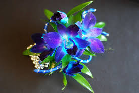 blue orchid corsage blue orchids italian ruscus wrist corsage stem dyed fre flickr