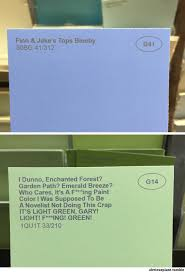 weird paint color names some guy renamed the paint colors at a hardware store and it s