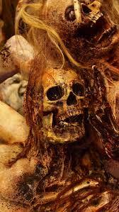 219 best halloween skeletons skulls u0026 mummies images on pinterest