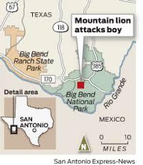 Big Bend Map Big Bend Mountain Lion Attacks Boy 6 San Antonio Express News