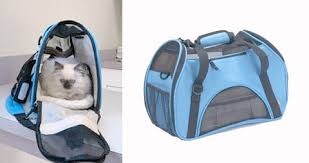 bergan comfort carrier airline approved pet carriers cat carriers pet comfort carrier