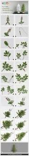 best 25 christmas tree crafts ideas on pinterest christmas