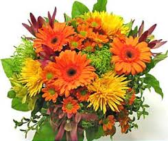 send thanksgiving flowers the flower expert flowers encyclopedia