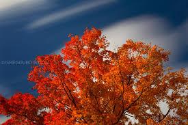 Massachusetts where to travel in october images Massachusetts greg dubois jpg