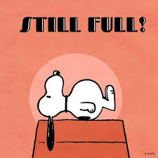 snoopy still two days after thanksgiving the