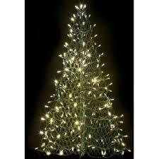 real mini christmas tree with lights christmas topiary trees wayfair
