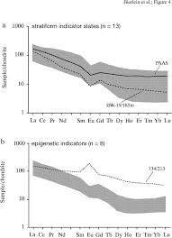 the role of carbonaceous