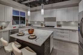 Kitchen Cabinets In Surrey Hyde Parkhyde Park Features Surrey Townhomes
