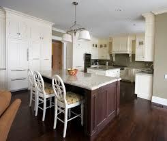 Fascinating White Kitchen Cabinets With Dark Wood Floors  In - Dark wood kitchen cabinets