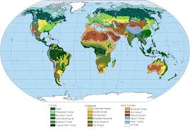 Biome World Map by The Biomes Of A Tilted Earth Oc 1204x840 Mapporn