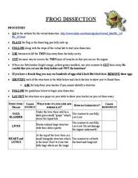 frog dissection lesson plans u0026 worksheets reviewed by teachers