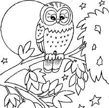owl large moon coloring owl large moon coloring