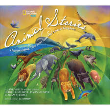 really wild animals collection 4 dvd set national geographic store