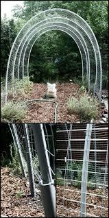 how to build trellis 109 best garden landscape images on pinterest gardening balcony