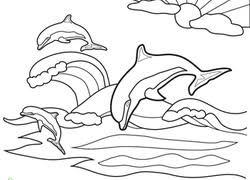 dolphin coloring pages u0026 printables education
