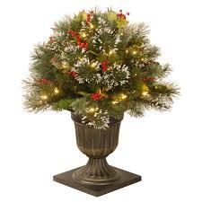 Pre Lit Topiary Wintry Pine Pre Lit Archway Topiary Hayneedle