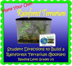 rainforest classroom museum