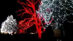 when does the lights at the toledo zoo start lights before christmas toledo zoo part 1 youtube