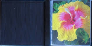 8x10 Photo Albums Dalee Book A Bindery Source For Albums Frames Binders And Refills