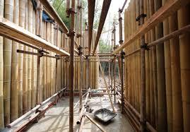 bauen mit bambus baumeister