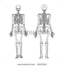 illustration vector hand draw doodles human stock vector 428575528