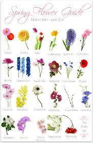 wedding flowers types types of flowers wedding flower guide