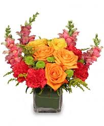 get well flowers from local charlotte nc florist u0026 flower shop
